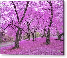 New York City Springtime Acrylic Print by Vivienne Gucwa