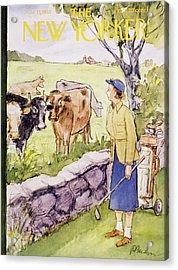 New Yorker June 11 1955 Acrylic Print
