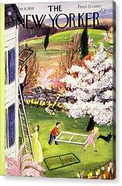New Yorker May 6 1950 Acrylic Print