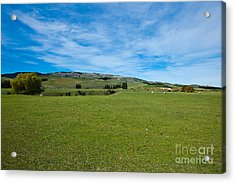 New Zealand Green Rolling Hills Acrylic Print by John Buxton