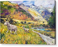 New Zealand Pastoral Acrylic Print by Steven Boone