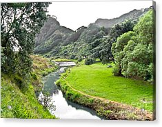 Acrylic Print featuring the photograph New Zealand Scenery by Yurix Sardinelly