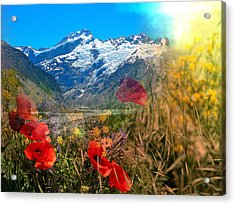 New Zealand Southern Alps Montage Acrylic Print