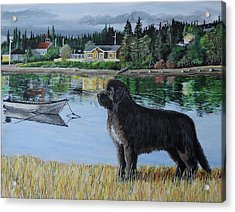 Newfoundland In Labrador Acrylic Print