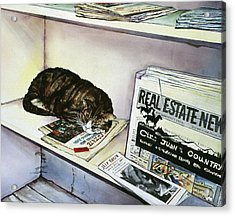 Newpaper Cat Acrylic Print