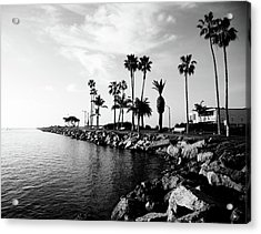 Newport Beach Jetty Acrylic Print by Paul Velgos