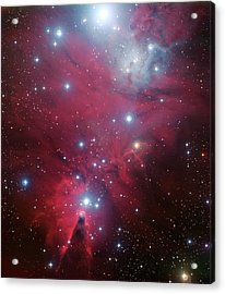 Acrylic Print featuring the photograph Ngc 2264 And The Christmas Tree Star Cluster by Eso