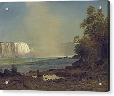 Niagara Falls Acrylic Print by Albert Bierstadt