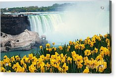 Niagara Falls Spring Flowers And Melting Ice Acrylic Print