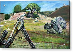 Nicasio Fence Post Acrylic Print by Colleen Proppe