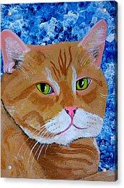 Nice Kitty Acrylic Print