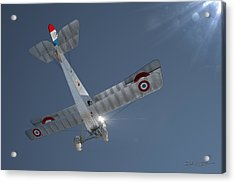 Nieuport 17 In The Blue Sky Acrylic Print by David Collins
