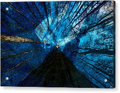 Acrylic Print featuring the painting Night Angel by David Lee Thompson