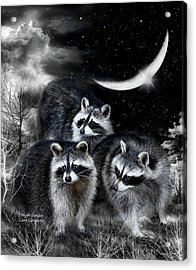 Night Bandits Acrylic Print by Carol Cavalaris