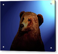 Acrylic Print featuring the digital art Night Bear by Timothy Bulone