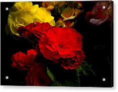 Night Begonias Five Acrylic Print by John Ater