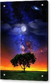 Night Colors Acrylic Print