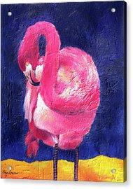Night Flamingo Acrylic Print by Noga Ami-rav