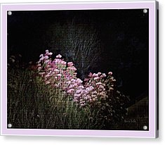 Night Flowers Acrylic Print by YoMamaBird Rhonda