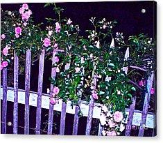 Night Gate Acrylic Print by Chuck Taylor