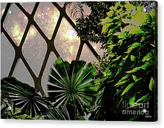Night In The Arboretum Acrylic Print