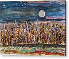 Night In The Cornfield Acrylic Print by John Williams