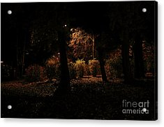 Night In The Park  Acrylic Print