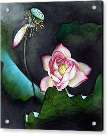 Night Lotus Acrylic Print by Leaf Moore
