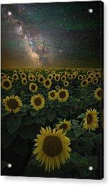 Night Of A Billion Suns Acrylic Print