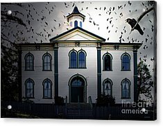 Night Of The Birds . 7d12487 Acrylic Print by Wingsdomain Art and Photography