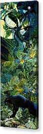 Night Of The Panther Acrylic Print by Anne Weirich