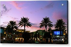 Night On The Town Palm Beach Florida Photo 515 Acrylic Print