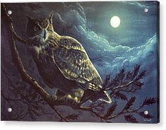 Night Owl Acrylic Print