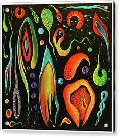 Night  Rogues Acrylic Print