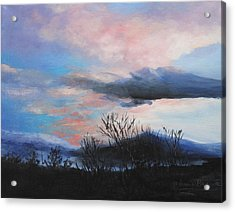 Acrylic Print featuring the painting Night Sky by M Diane Bonaparte