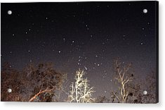 Night Sky Acrylic Print