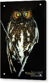 Night Vigil Acrylic Print by Kevin Ballew