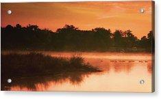 Nightfall Ducks Acrylic Print