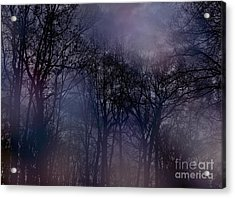 Acrylic Print featuring the photograph Nightfall In The Woods by Sandy Moulder