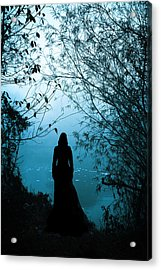 Nightfall Acrylic Print by Cambion Art