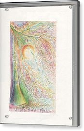 Nightshine Acrylic Print by Rich Graham
