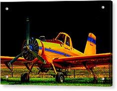 Nightstalker 439 Acrylic Print