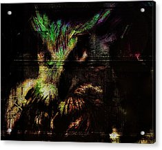 Nightvision Acrylic Print by Mimulux patricia no No
