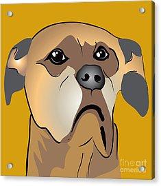 Niki Boxer Dog Portrait Acrylic Print