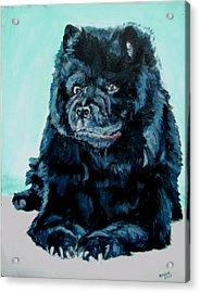 Acrylic Print featuring the painting Nikki The Chow by Bryan Bustard