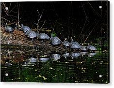 Nine In A Row Acrylic Print