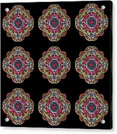 Nine Medallions Acrylic Print by Thomas Smith