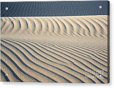 Nipomo Dunes Acrylic Print by Ronald Hoggard