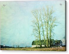 Acrylic Print featuring the photograph Nisqually Barns by Jean OKeeffe Macro Abundance Art