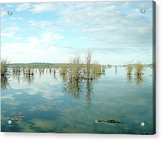 Nisqually High Tide Acrylic Print